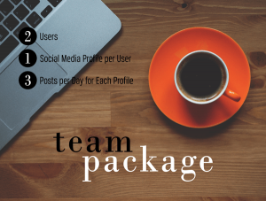 Social Media Team Package
