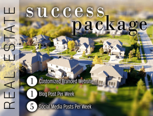 Automated Social Media Posting Packages | STEADY RADIANCE DESIGN